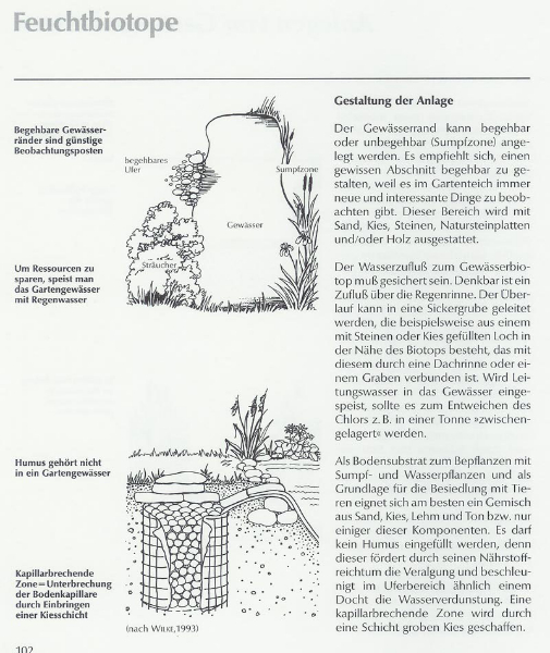 Gestaltungsvorschlag
